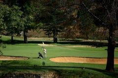 Vert de golf Photographie stock