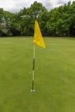 Vert de golf avec l'indicateur Photos libres de droits