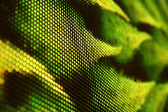Vert de l'écran SMD de LED Photographie stock