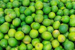 Vert de limette Images libres de droits