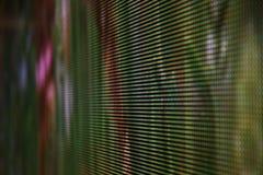 Vert de photo d'écran de LED Images libres de droits
