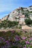 Vert de Positano et de bouganvillea Photo stock