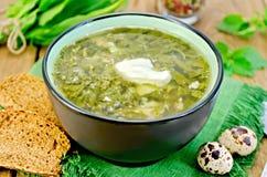 Vert de soupe d'oseille et d'orties avec des oeufs sur le conseil Image stock