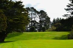 Vert de terrain de golf du Nouvelle-Zélande photographie stock