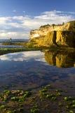 Vert de tige de pêcheur Photographie stock libre de droits
