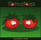 Vert de tomates Photos stock