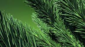 vert du sapin 3d Image libre de droits
