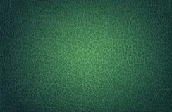 Vert en cuir, Endroit-allumé Photo libre de droits