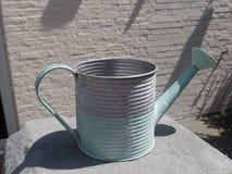 Vert en pastel et boîte d'arrosage grise photo libre de droits
