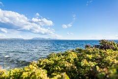 Vert et bleu en parc national de glacier Photo libre de droits