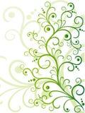 vert floral de conception Photos libres de droits