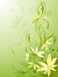 Vert floral de fond illustration stock
