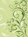 vert floral de fond Images libres de droits