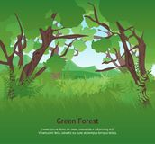 Vert Forest Landscape Background Card Poster d'été de bande dessinée Vecteur Image stock