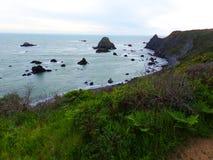 Vert Hillside de la Californie et roches dans l'océan - voyage le long de la route côtière 1 photographie stock libre de droits