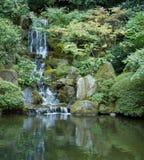 Vert japonais de cascade à écriture ligne par ligne de jardin. gauche Photographie stock