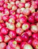 Vert pomme, rouge Photo libre de droits