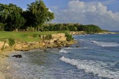 Vert sur une falaise Image libre de droits