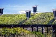Vert toit 'vivant' Photographie stock