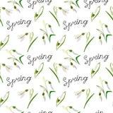 Vert, vecteur, ressort, nature, fleur, illustration, perce-neige, b illustration de vecteur