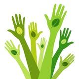 Vert vivant Images libres de droits