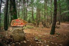 Vertaling van het rode teken: 'Tazi-Canion ' Bos achtergrond Windhondcanion, Wijsheidsvallei stock afbeeldingen