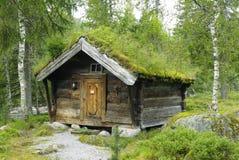 Vertente de madeira velha com um telhado verde em Noruega Imagem de Stock