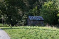 Vertente de madeira velha na floresta Fotos de Stock Royalty Free