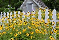 Vertente do jardim Fotos de Stock Royalty Free