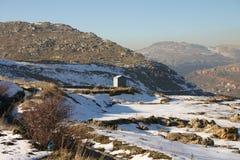 Vertente solitária na montanha Foto de Stock Royalty Free