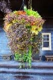 Verticaal-hangt het mandhoogtepunt van bloemen hangt vóór een oud houten hotel stock afbeeldingen