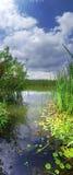 Verticaal panorama van de rivier Stock Afbeeldingen