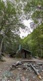 Verticaal-panoramisch beeld van Hut in het midden van het bos Stock Foto