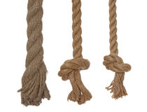 Vertical 3 ropes with knots. 3 linen ropes, isolated on a white background Royalty Free Stock Image