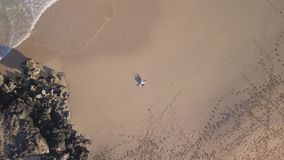 Vertical aerial view of a girl lying in a deserted beach stock video footage