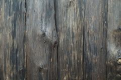 Vertical aged wall of dark wood, covered with varnish and stain. Lovely texture of the tree is clearly visible-knots and fibers. Vertical aged wall of dark wood royalty free stock photo