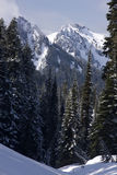 Vertical alpestre Fotos de archivo