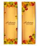 Vertical autumn banners. Vector vector illustration