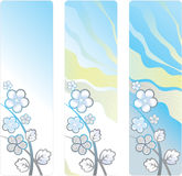 Vertical background with decorative white flowers. Vertical blue background with decorative white flowers and foliage. Three variants of color Royalty Free Stock Photography