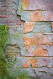 Vertical background old brick wall with remnants of plaster. Vertical background texture old brick wall covered with moss, with remnants of colored plasters Royalty Free Stock Photos
