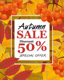 Vertical background with rowan, berries, leaves, and sign autumn. Sale, fall. Vector illustration Royalty Free Stock Photography
