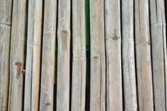 Vertical bamboo background Stock Photos