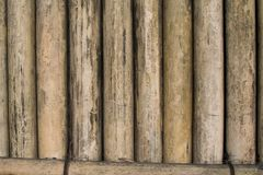 Vertical bamboo wall background, abstract of bamboo wall royalty free stock images