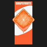 Vertical Banner of grapefruit square slice. Space Royalty Free Stock Image