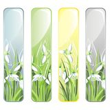 Vertical Banner with spring flowers Stock Images