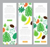 Vertical banner with tropical leaves and fruits stock illustration