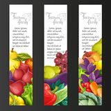 Vertical banners with fresh fruits and vegetables on a black Stock Photography