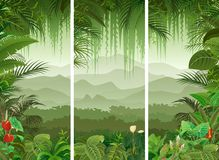 3 vertical banners set of tropical forest background. Illustration of 3 vertical banners set of tropical forest background Stock Image