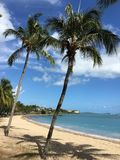 vertical beach sunny day Airlie Beach australia Royalty Free Stock Image