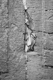 Vertical black and white close-up of paper notes in the wailing wall stock image
